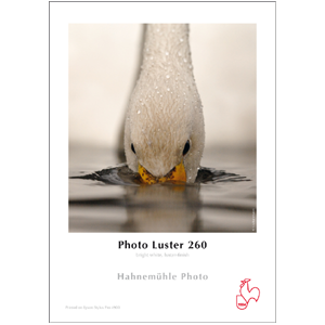Hahnemühle Photo Luster 260 g/m² - A4 250 ark